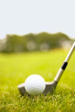 Golfinfomercialyoucanlearnfrom